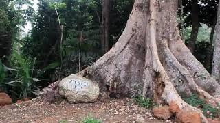 Village Madiba: Le site touristique par excellence au Cameroun