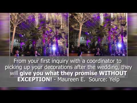 best-wedding-venue-reviews!---the-crystal-gardens---chicago,-il---reviews
