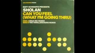 Matt Schwartz Pres.Sholan - Can You Feel (Thrillseekers Remix)