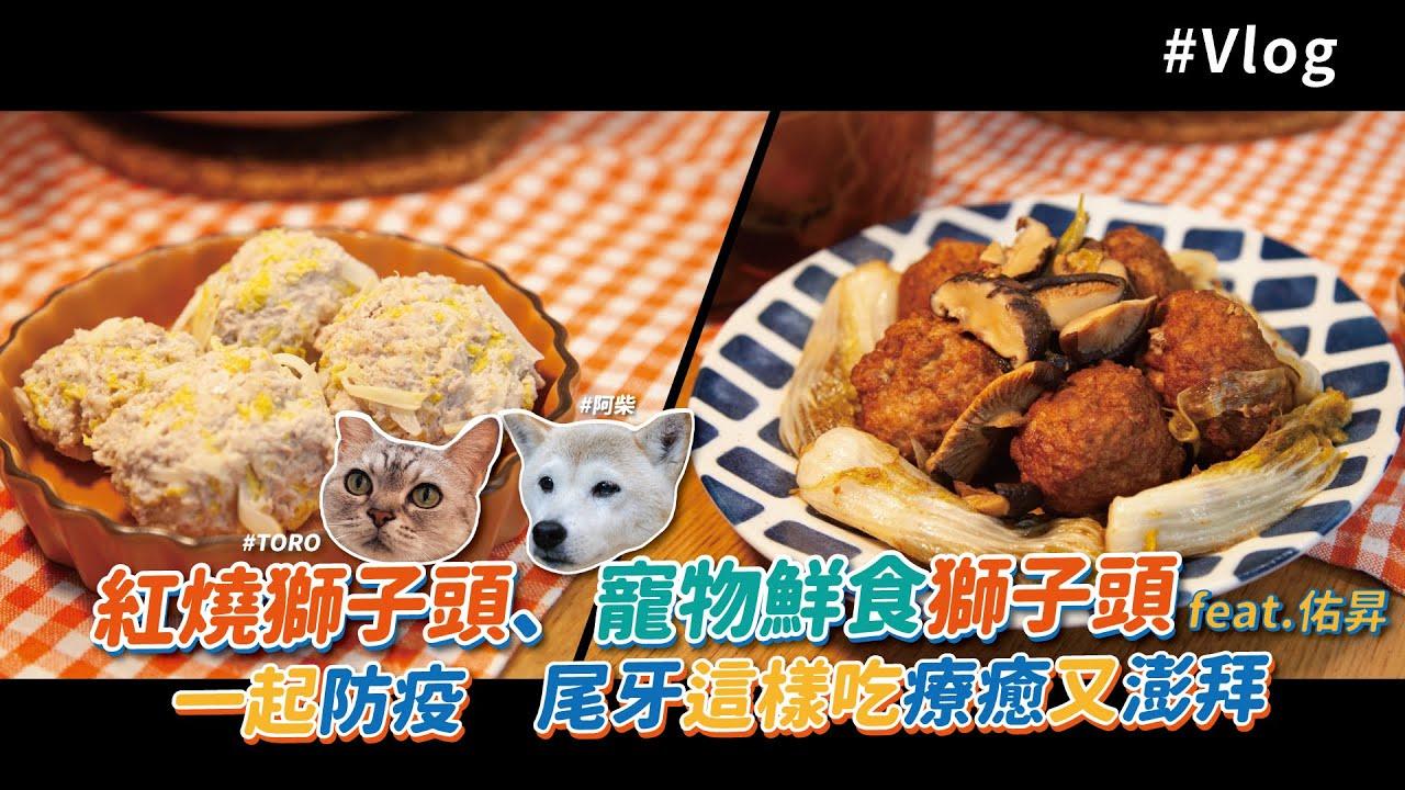 紅燒獅子頭、寵物鮮食獅子頭| 準備吃尾牙 狗狗貓貓通通都有份! 【料理123Vlog】