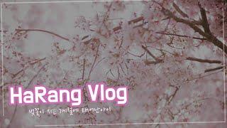 [하랑이 Vlog #1] 태어나서부터~인생2.5일차까지…