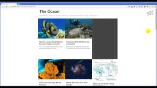 PageSound - Adobe Muse виджет для фоновой музыки на сайте