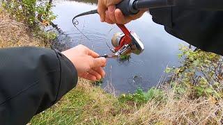 Столько ЩУКИ на Малой реке еще НЕ ЛОВИЛ Рыбалка на спиннинг