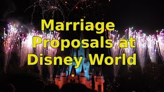 Marriage Proposals and Photopass at Walt Disney World - Ep 49 Confessions of a Theme Park Worker
