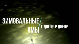 Обзор (разбор) Зимовальных ям г.р.Днепр (акватория Лесопарк)