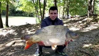 Риболов на шаран яз.Кастел 2016/ Carp fishing lake Kastel 2016