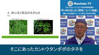 茅ヶ崎の田んぼと環境について(後編)