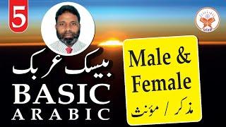 #5 Basic Arabic For Beginners  ابتدائی عربی کلاسز   A. Salam   May 31, 2020.