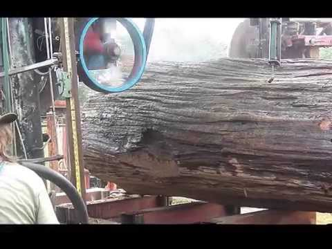 Cross Sawmill Rips Its Way To a New World Record