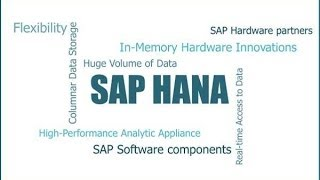 SAP HANA Demo By SAP SOLUTIONS