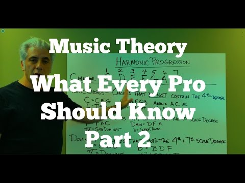 Music Theory Lecture - What Every Pro Musician Needs To Know  Pt 2