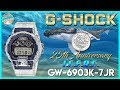 25th Anniversary! | G-Shock 2019 Love The Sea And Earth I.C.E.R.C. GW-6903K-7JR Unbox & Review