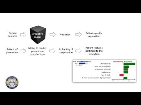 Patient-Specific Explanations from Risk Prediction Models