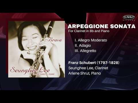 SCHUBERT Arpeggione Sonata in A Minor for Clarinet in Bb and Piano