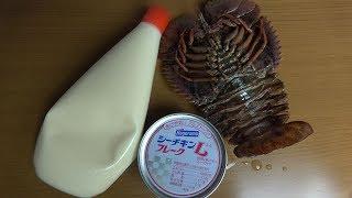 朝ごはん作ってみた。『シーチキンマヨ丼』
