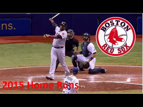 David Ortiz | 2015 Home Runs