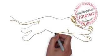 Мультик король лев  Как быстро карандашом рисовать король лев поэтапно(Король лев мультфильм. Как правильно нарисовать короля льва онлайн поэтапно. На самом деле легко и просто..., 2014-09-18T16:02:40.000Z)