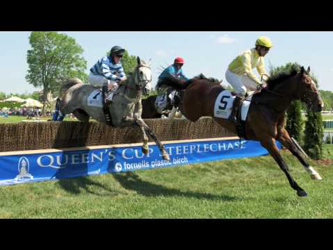 Steeplechase Racing - Fly Baby Fly!