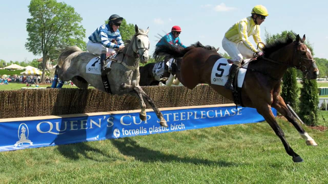 Steeplechase Racing Fly Baby Fly Youtube