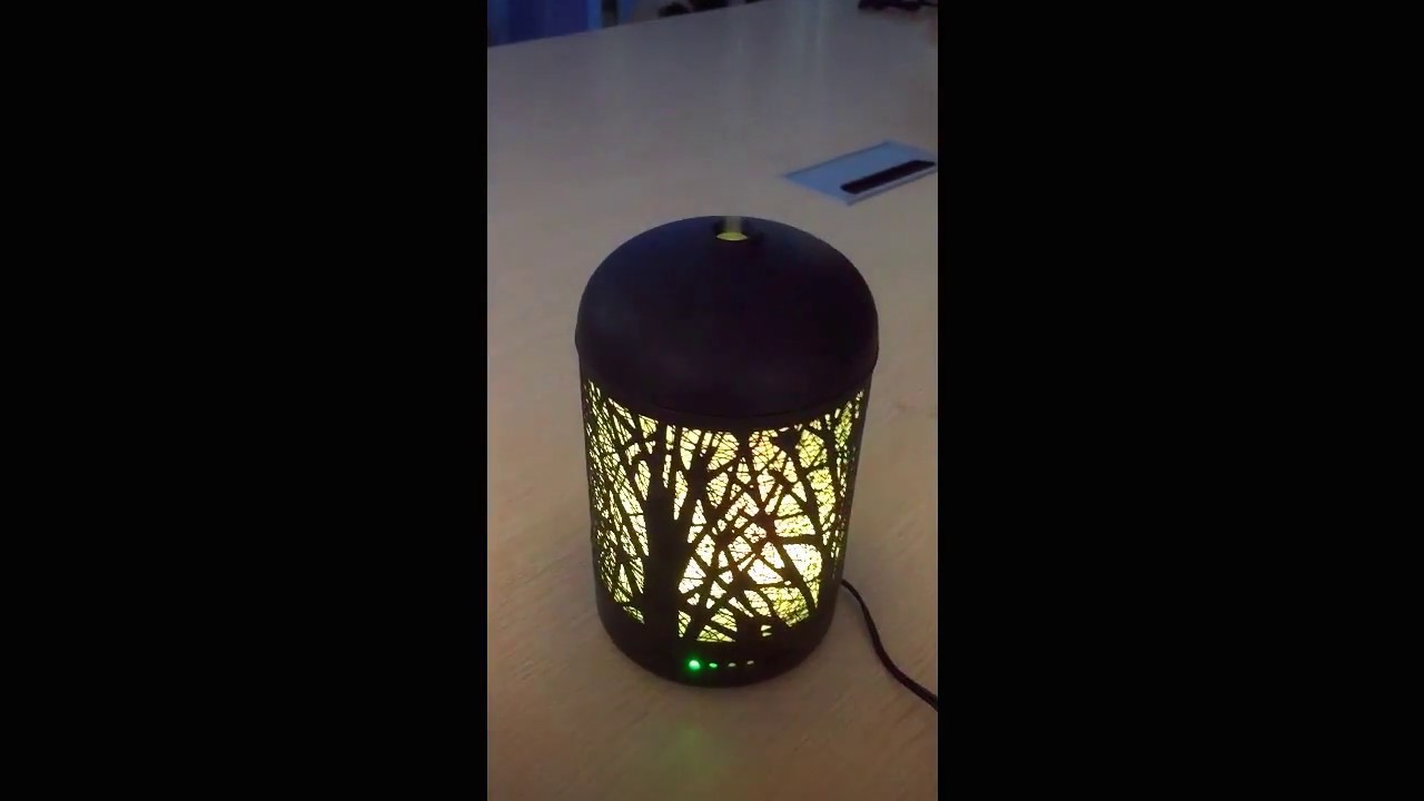 Essential Oil Diffusers, EIVOTOR 100ml 3D by mark burns