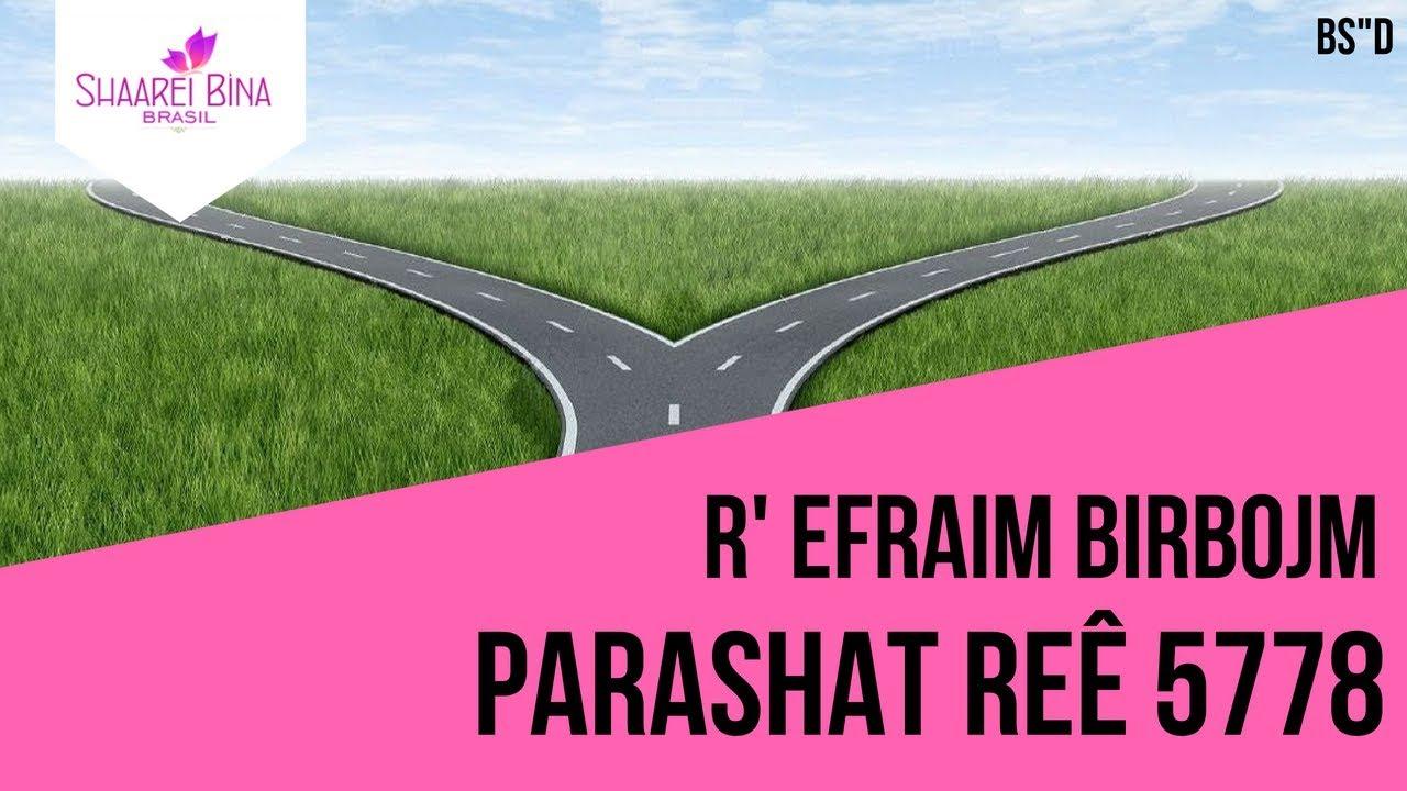 Parashat Reê 5778 - R' Efraim Birbojm - Shaarei Biná Brasil