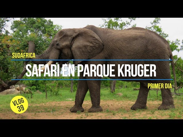 Parque Nacional Kruger en SUDAFRICA