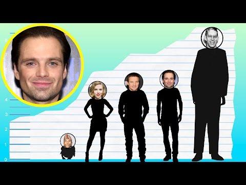 How Tall Is Sebastian Stan? - Height Comparison!