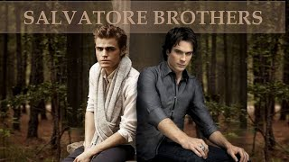 Stefan And Damon's Best Brotherly Moments