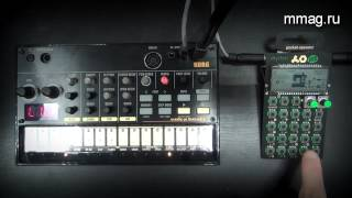 Teenage Engineering PO-12 Rhythm vs Korg Volca Beats