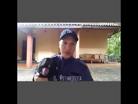 34+ Anjing malinois sparta terbaru