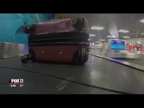 Your bag's winding journey through Tampa International Airport