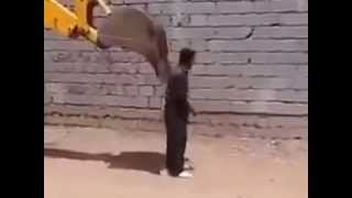 Pakistani funny video 1 New Funny Clips Pakistani 2013   Video Dailymotion clip0
