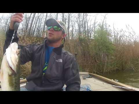 Reed Flippin' | Newton Lake