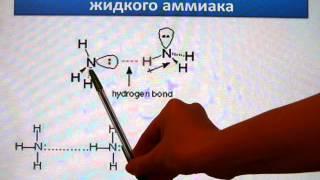 водородная связь. Типы и свойства водородной связи