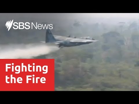 Brazilian military deployed to help fight Amazonian blaze