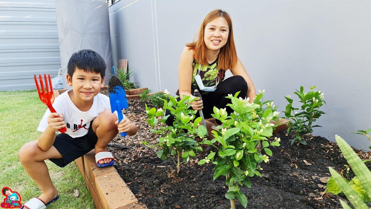 น้องบีม | ช่วยแม่บีปลูก ต้นพริก ใบกะเพรา มะลิ