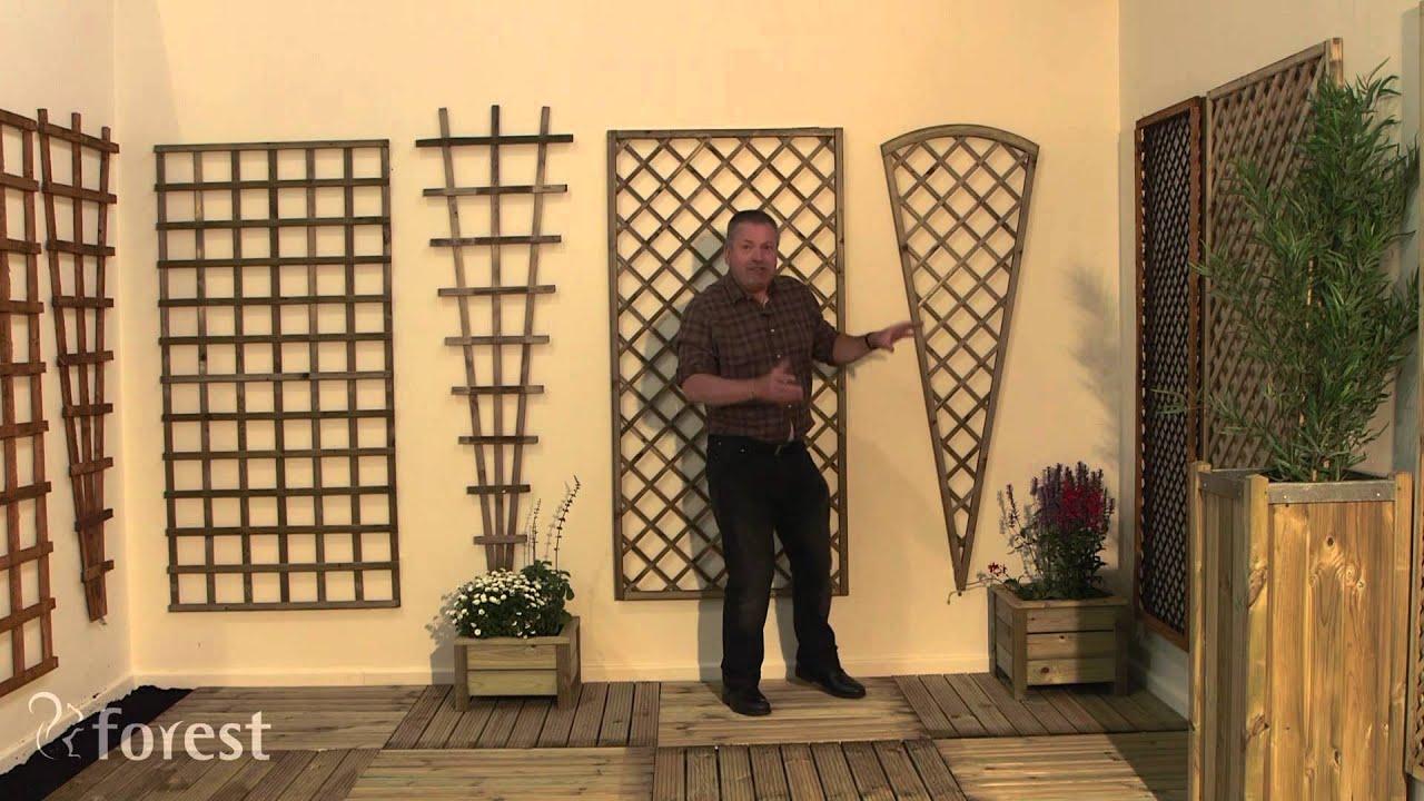 Forest Garden - Trellis Explained - YouTube