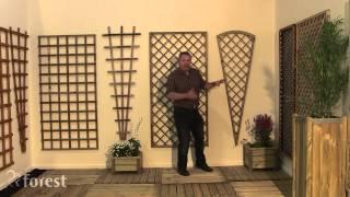 Forest Garden - Trellis Explained
