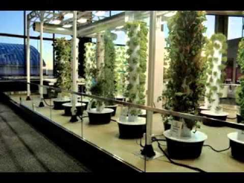 Vertical Aeroponic Tower Garden Ideas Youtube