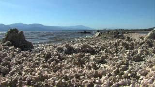 A Shrinking Salton Sea Raises Health Concerns