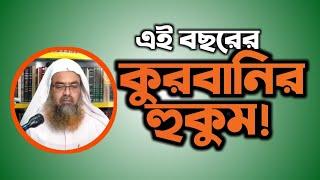 Question এই বছর কুরবানী করার হুকুম কি Answer Sheikh D Abubakkar Zakaria