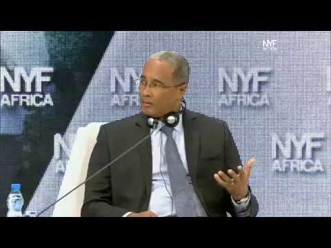 NYFA 2014 - Sovereign Wealth Funds [In English]