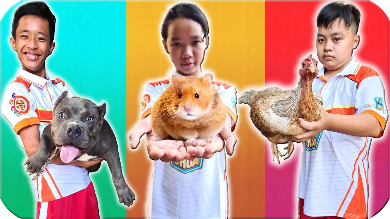 Tony | Thử Thách Bốc Thăm Nuôi Chó - Chuột - Gà