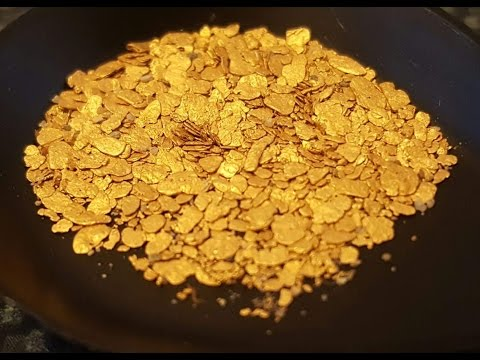 Gold Prospecting the West Coast of the South Island New Zealand