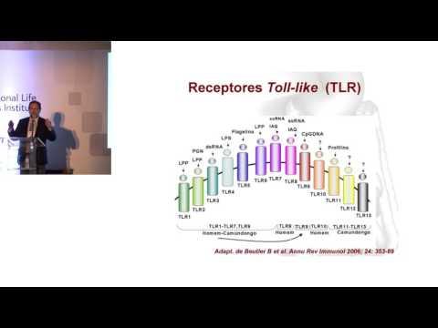ILSI Brasil: Barreira Intestinal, Microbioma e Saúde (Dr. Aderson Damião FM/USP)
