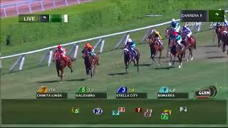 Vidéo de la course PMU PREMIO DAMA DE ROSA