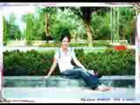 huong lua thai binh
