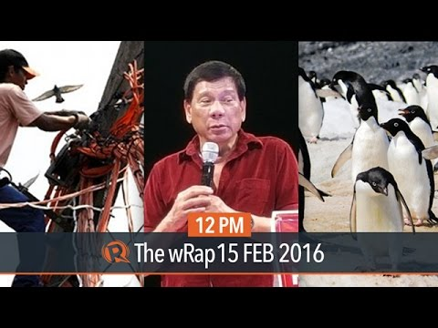 Election surveys, power hike probe, penguins in Antarctica |