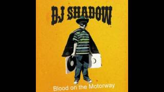 Dj-Shadow Blood on the Motorway