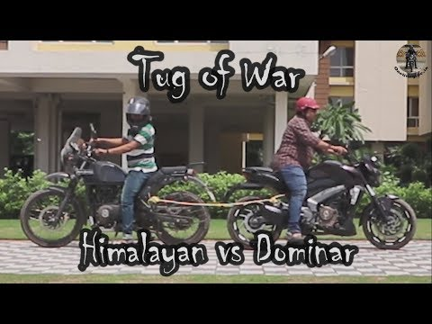 Himalayan vs Dominar Tug of War
